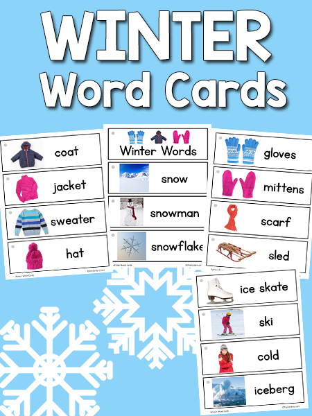 Winter Picture-Word Cards