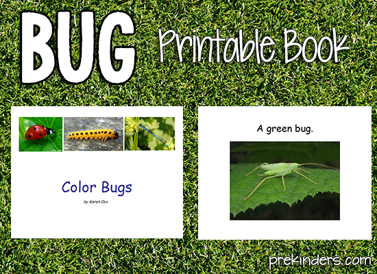 Color Bugs Printable Book