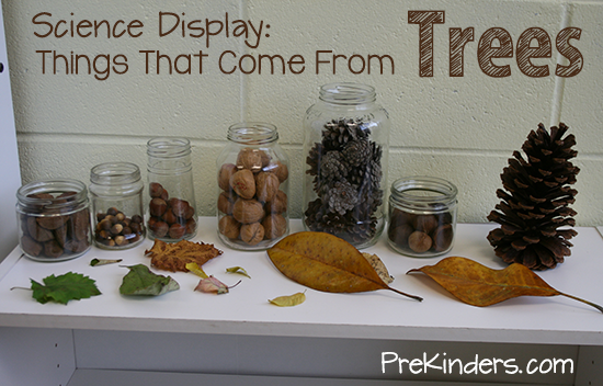 Science Center Ideas For Pre K And Preschool Prekinders