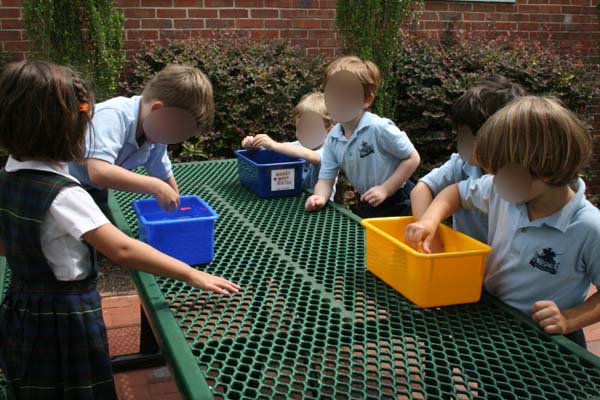 Float and Sink Preschool Science Experiment