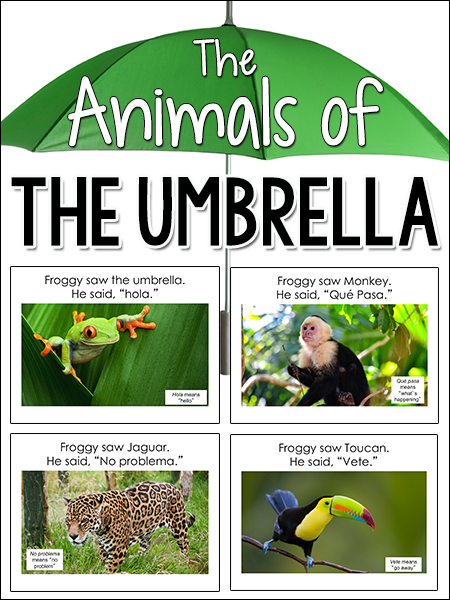 Animals of the Umbrella, Jan Brett