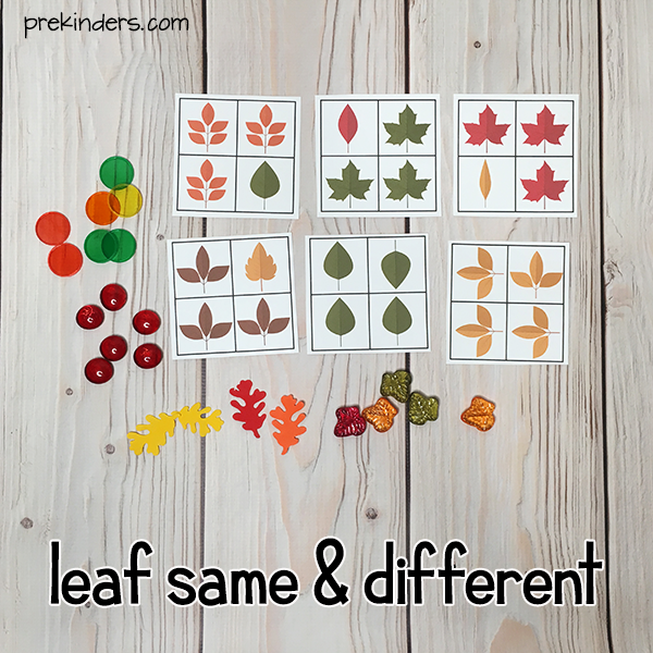 Leaf Same and Different Game