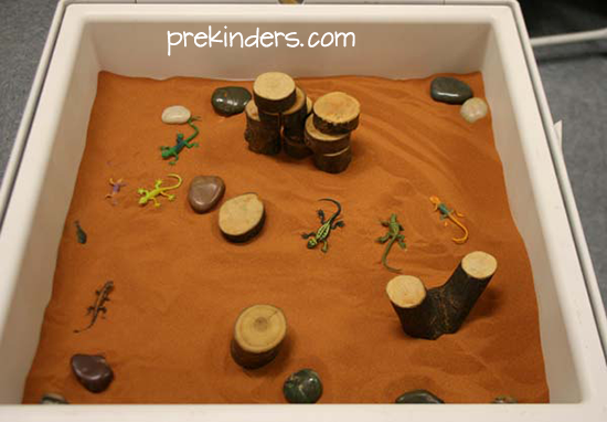 Lizards in the Sensory Table