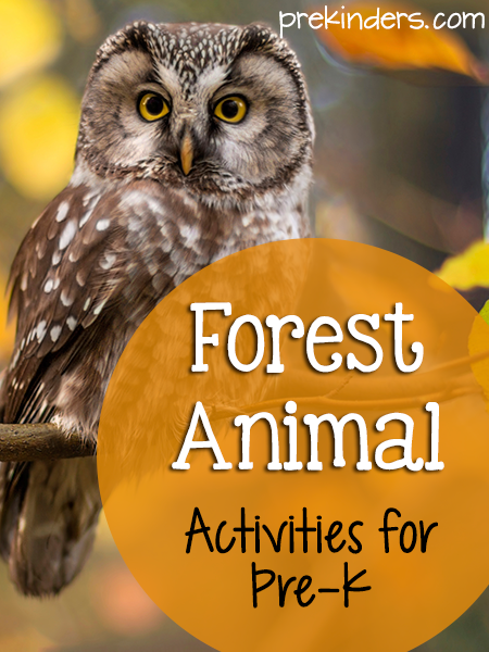 Forest Theme Activities for Pre-K, Preschool