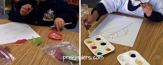 Leaf Drawing in Pre-K & Preschool