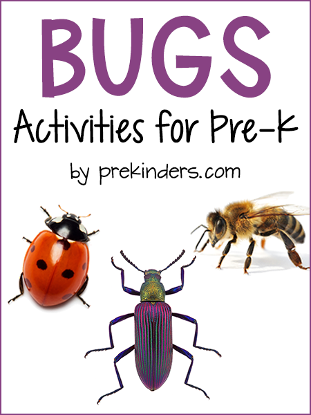 Bugs Theme Prekinders - View Preschool Insects Worksheets For Kindergarten PNG
