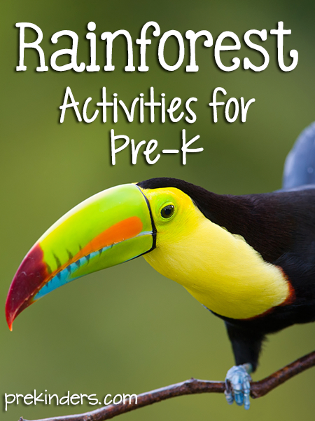 Rainforest Theme Activities for Pre-K Preschool