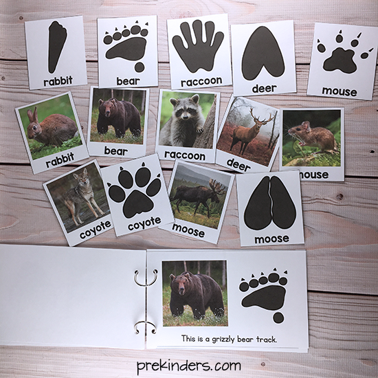 Animal Tracks Printable Book & Matching Cards for Pre-K, Preschool, Kindergarten