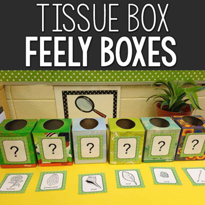 Tissue Box Feely Boxes: Sense of Touch