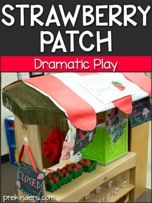 Strawberry Patch Dramatic Play