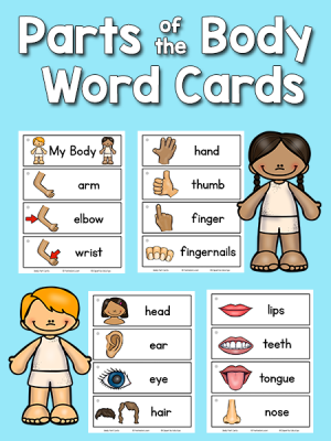 Picture-Word Cards Printables - PreKinders