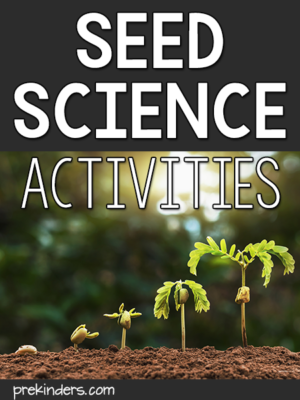 Seed Science Activities for Pre-K, Preschool